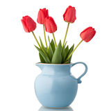 Tulips in jar Stock Photography