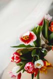 Tulips in a jar. On a table Stock Photo