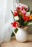 Tulips in a jar. On a table Stock Images