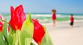 Tulips and kids on beach Stock Photography
