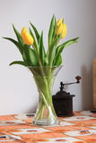 Tulips on kitchen table. Yellow tulips on kitchen table Royalty Free Stock Image