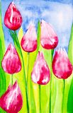 Tulips with leaves close-up in the field against the sky. Watercolor illustration vector illustration