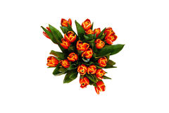Tulips. A lot og fresh tulips in a vase Stock Photo