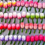 Tulips made of wood Stock Photo