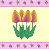 Tulips and mallows on yellow Stock Photography