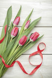 Tulips on March 8 Stock Photography