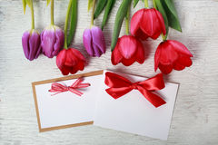 Tulips with message card Royalty Free Stock Images