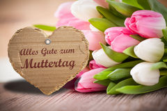 Tulips with message saying Best wishes for Mother's Day. In German stock images