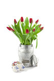 Tulips in milk can Stock Images