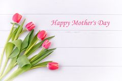 Tulips for mothers day. Royalty Free Stock Image