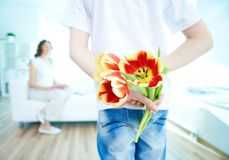 Tulips for mum. Rear view of lad with bunch of beautiful tulips behind back preparing nice surprise for his mother Royalty Free Stock Photos