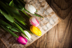 Tulips on a music notes paper. Background Royalty Free Stock Photography