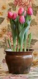Tulips na tapeçaria fotos de stock royalty free