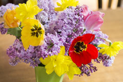 Tulips,narcissus and lilac  flowers-close up Royalty Free Stock Photo