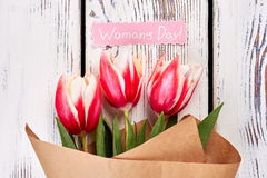 Tulips on natural background. Stock Images