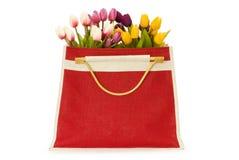 Tulips no saco vermelho isolado Fotografia de Stock Royalty Free