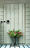 Tulips nos wellies Imagens de Stock Royalty Free