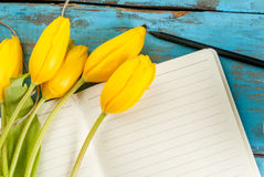 Tulips and notebook on blue table Stock Photography
