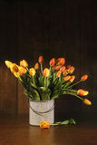 Tulips in old bucket Royalty Free Stock Photography