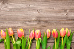 Tulips on old wooden background Stock Photography