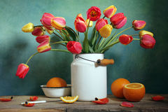 Tulips and oranges Royalty Free Stock Photo