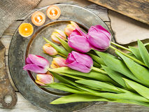 Tulips over rustic background. Fresh colorful tulips over rustic background royalty free stock images