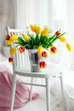 Tulips over a white and french wood chair Royalty Free Stock Image