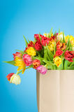 Tulips in the paper bag Royalty Free Stock Image