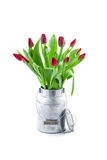 Tulips in a paper bag Stock Images