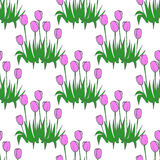 Tulips pattern on white seamless background. Stock Photo