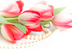 Tulips and pearls Stock Image