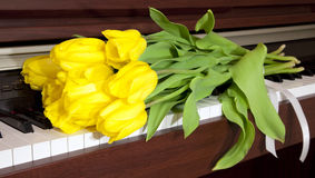 Tulips and the piano Stock Photo