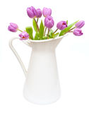 Tulips in Pitcher stock image