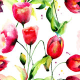 Tulips and Poppy flowers illustration Stock Image