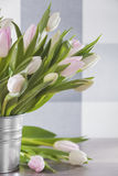 Tulips in pot Stock Photography