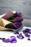 Tulips purple: congratulations, March 8 International Women`s Day, February 14th Valentine`s Day, holiday Stock Image