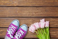 Tulips and purple gumshoes. On wooden background Stock Photos