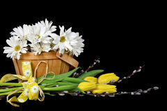 Tulips with willow and daisy bouquet Royalty Free Stock Photos