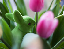 Tulips and rabbit Stock Image