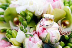 Tulips with rings Royalty Free Stock Photography