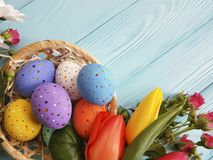 Tulips beautiful , roses easter eggs basket on blue wooden postcard royalty free stock photography