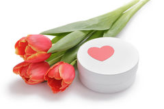 Tulips with round gift box Royalty Free Stock Photos