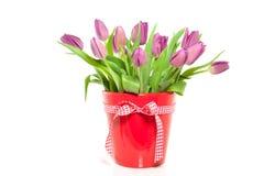 Tulips roxos em um vaso vermelho Imagens de Stock Royalty Free