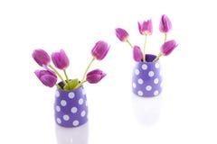 Tulips roxos em uns vasos foto de stock royalty free