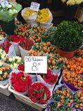 Tulips for sale in an Amsterdam flower market. Large bouquets of tulips for sale in spring in Amsterdam, The Netherlands, priced at just 8 Euros for 50 Royalty Free Stock Images