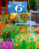 Tulips for sale on the Rue Cler. In Paris, France Royalty Free Stock Photos