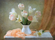 Tulips. Salmon-colored composition with tulips royalty free stock image