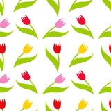 Tulips seamless pattern Stock Photo