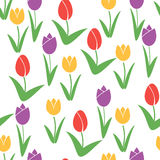 Tulips Seamless Pattern. Flower Vector Background. Stock Image