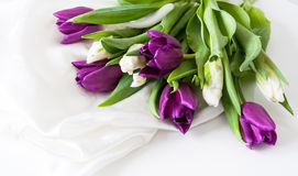 Tulips on silk Valentine day stock image